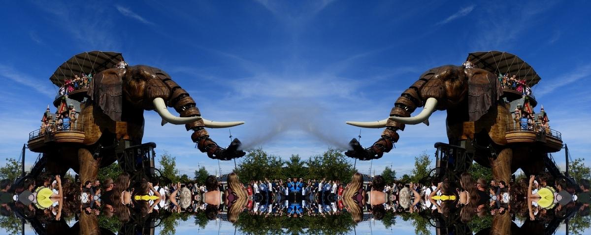 Elephants battle ! Post-6408-0-88920100-1440354538